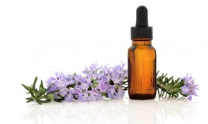 Aromatherapy for Dogs2