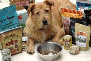 Commercial Dog Foods